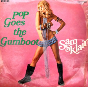 pop goes the gumboot cover