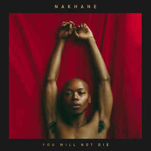 nakhane you will not die album cover